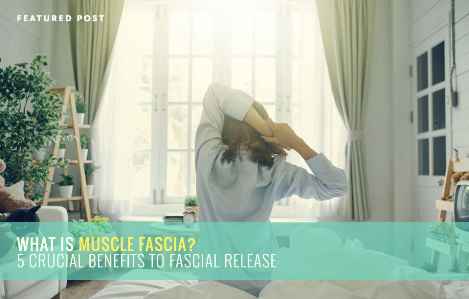 What is Muscle Fascia? 5 Crucial Benefits to Fascial Release