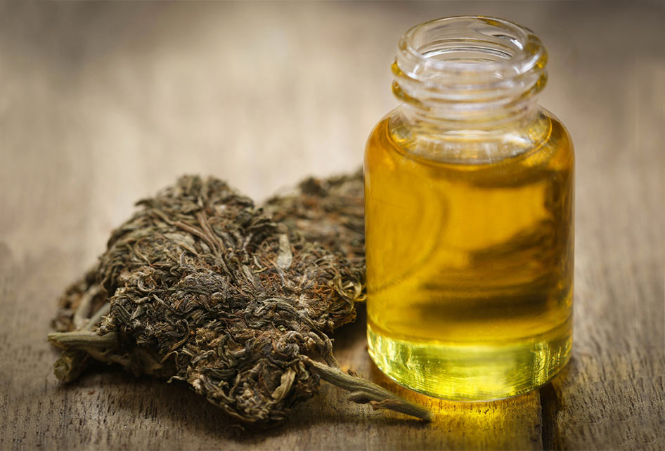 Meet Your Endocannabinoid System | Christiane Northrup, M D